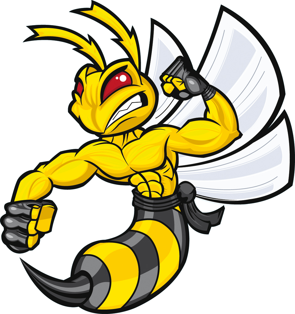 yellow hornets logo - photo #28