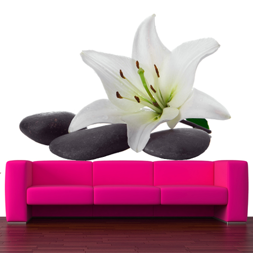 stickers galet orchid e pas cher. Black Bedroom Furniture Sets. Home Design Ideas