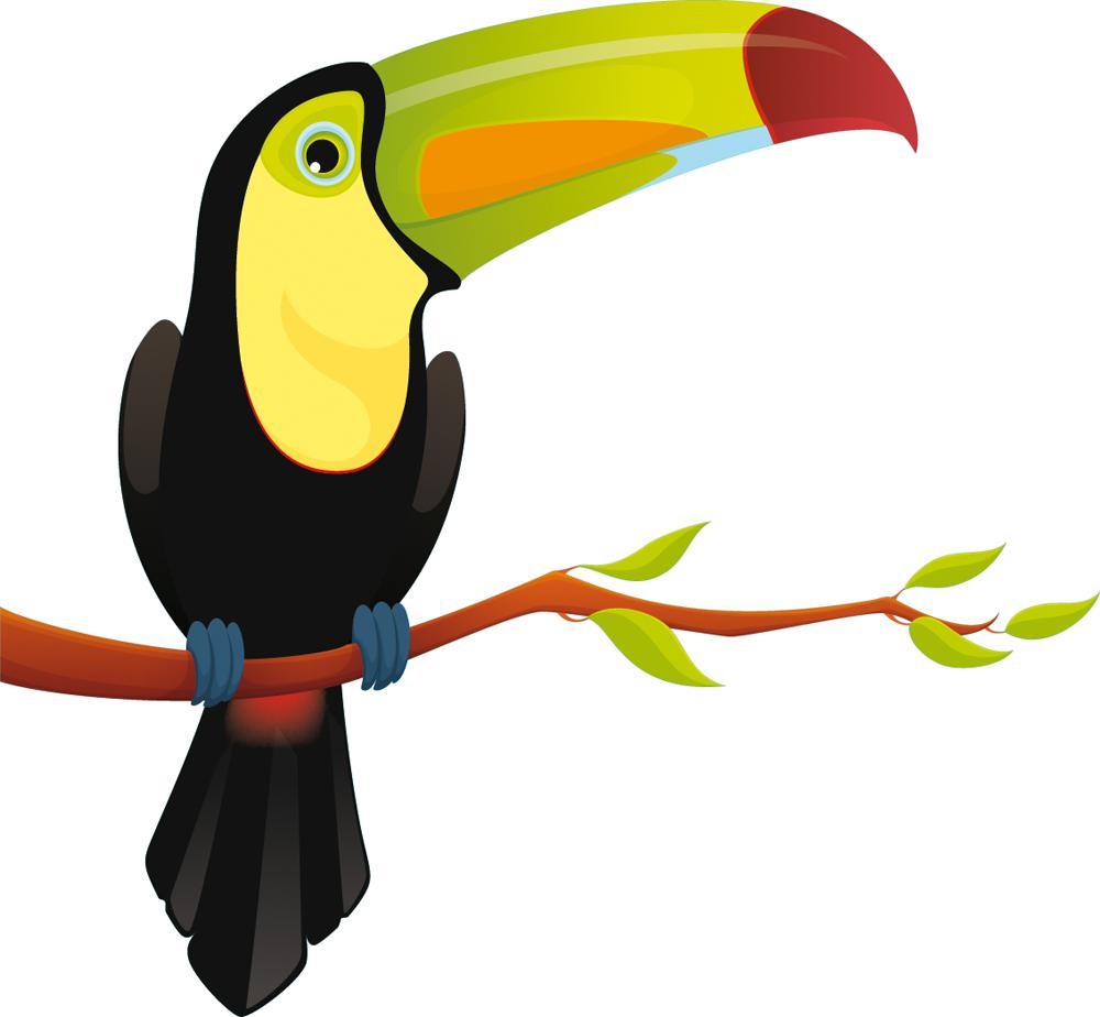 Stickers oiseau branche pas cher for Oiseau couleur