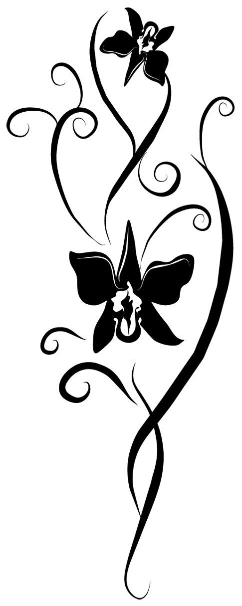 stickers orchid e pas cher. Black Bedroom Furniture Sets. Home Design Ideas