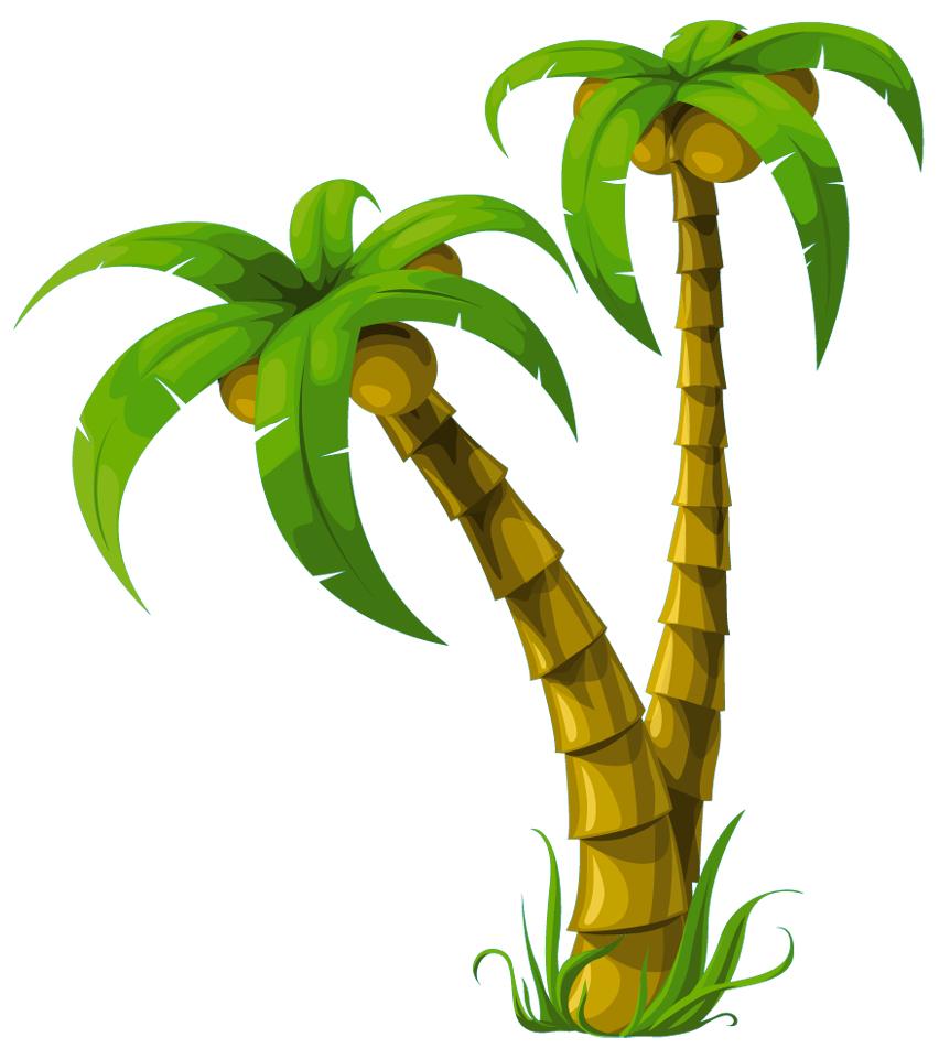 stickers palmier pas cher