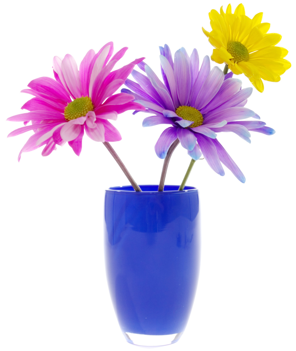 Stickers pot de fleur pas cher - Pot de fleur a accrocher ...