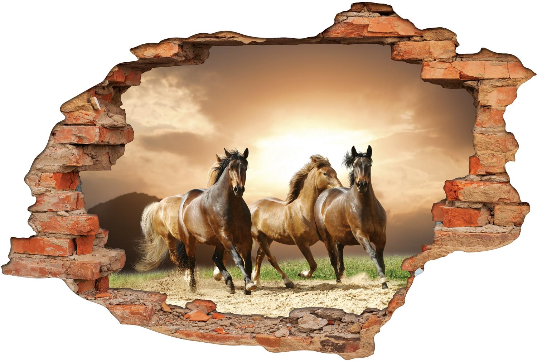 Stickers trompe l 39 oeil 3d chevaux pas cher - Trompe l oeil jardin ...