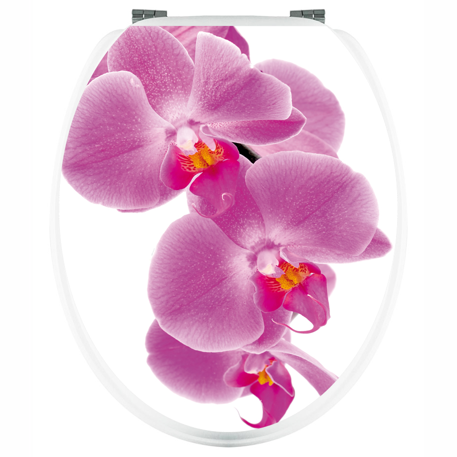 Abattant Wc Orchide. Find This Pin And More On Abattant Wc By ...