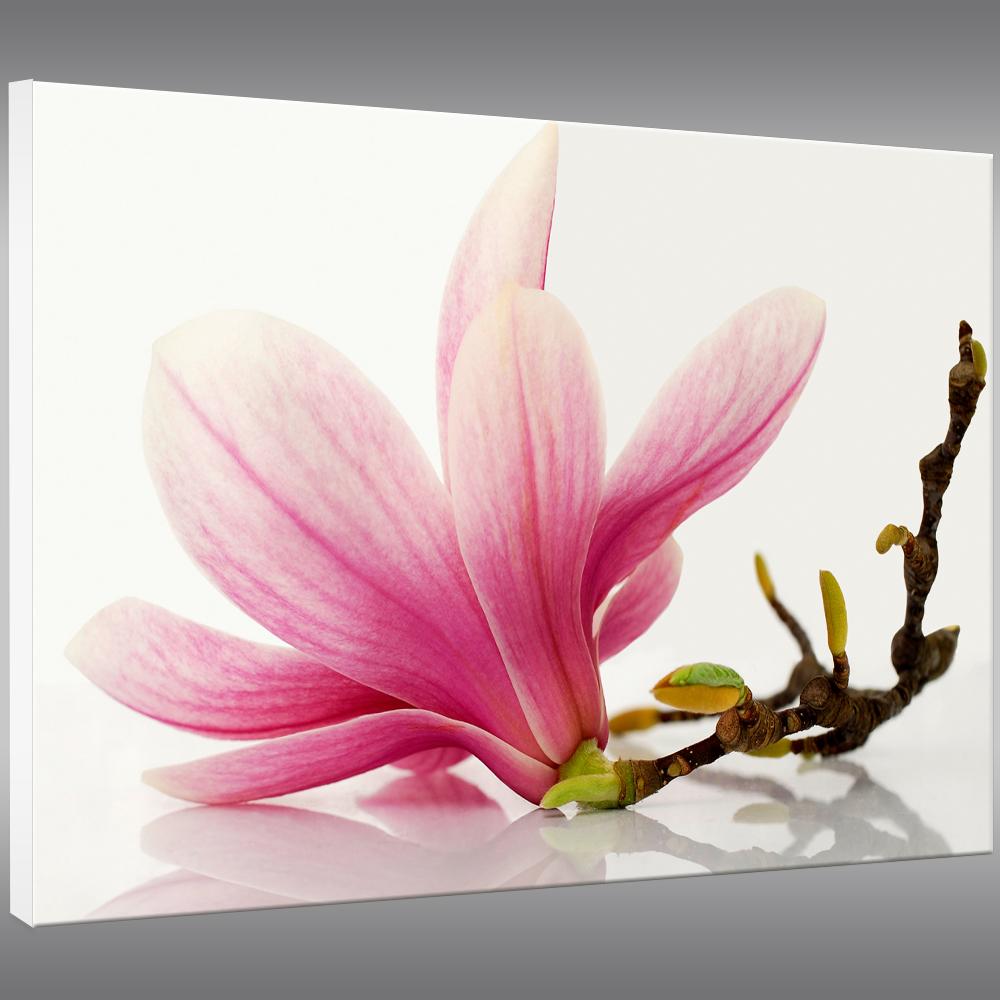 tableau forex fleur pas cher. Black Bedroom Furniture Sets. Home Design Ideas