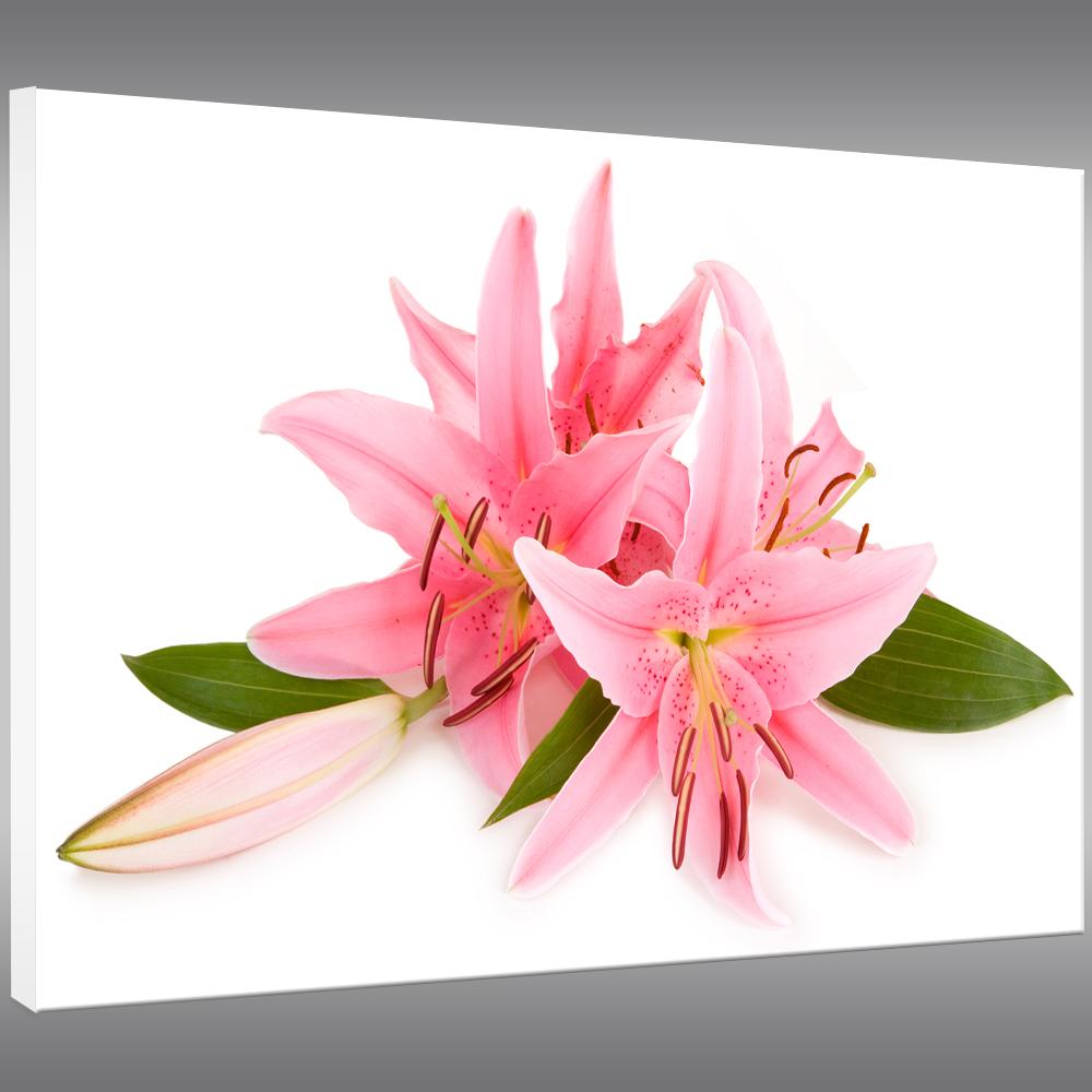 Fleurs tableau - Tableau triptyque fleurs blanches ...