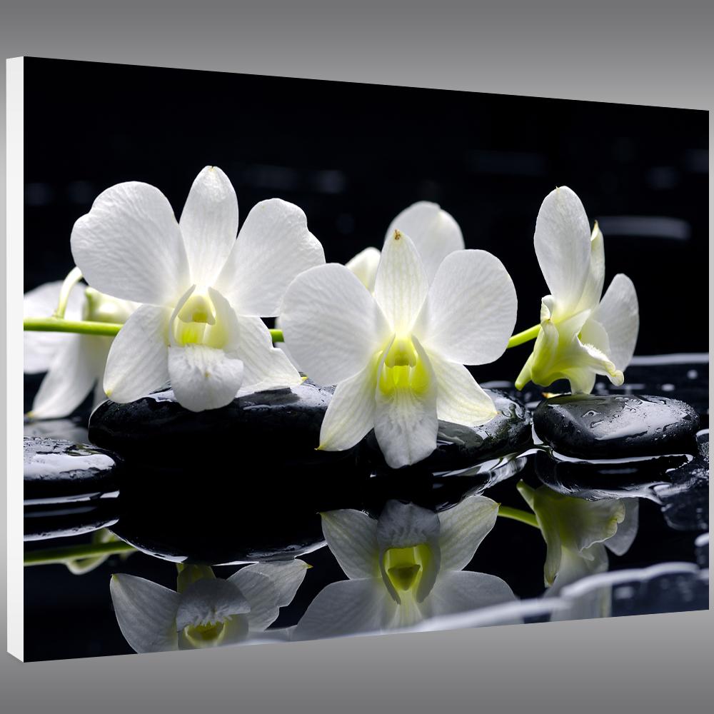 Tableau forex orchid e pas cher for Tableau triptyque noir et blanc