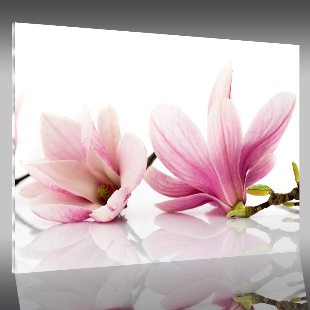Tableau plexi fleurs pas cher for Tableau plexi pas cher