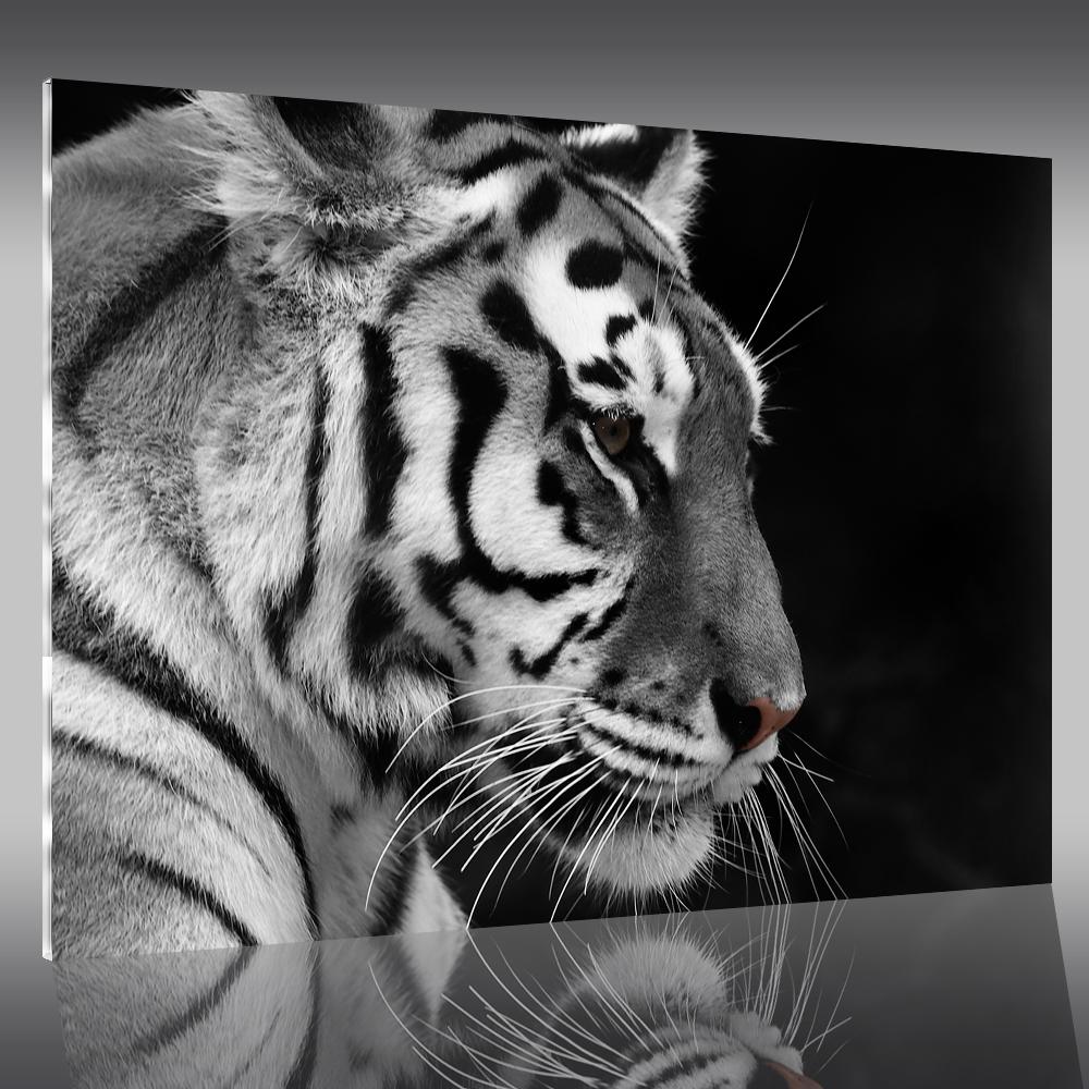 Tableau plexi tigre pas cher - Tableau photo plexi ...