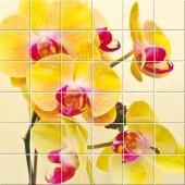 Adesivo per piastrelle fiori