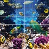 Adesivo per piastrelle sfondo pesci