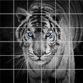 Adesivo per piastrelle tigre