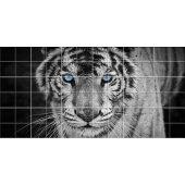 Autocolante Azulejo tigre
