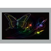 Butterflies Wall Posters