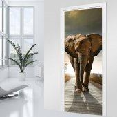 Fototapet pentru usa Elefant