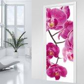 Fototapet pentru usa Orhidee