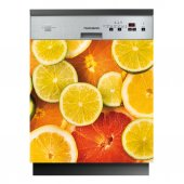 Fruits - Dishwasher Cover Panels