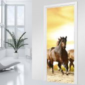 Horses Door Stickers
