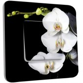 Interrupteur Décoré Poussoir Orchidées Fond Noir