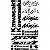 Kawasaki Ninja ZX-12r Aufkleber-Set