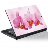 Laptop-Aufkleber Orchidee