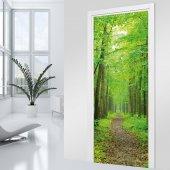 Naklejka na Drzwi - Dróżka w lesie