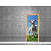 Naklejka na Drzwi - Owieczka