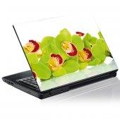 Naklejka na PC - Zielone Orchidee