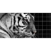Naklejka na Płytki Ceramiczne - Tygrys
