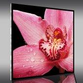 Quadro Plexiglass fiore