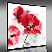Quadro Plexiglass fiori