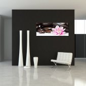 Quadro PVC Forex Zen