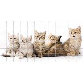 Sticker pentru faianta Pisica