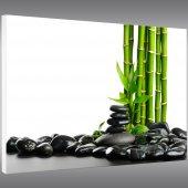 Tableau Forex Zen