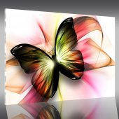 Tableau Plexi Papillon