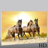 Tryptyk Forex - Konie
