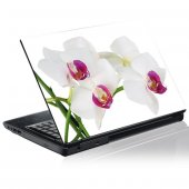 Vinilo para Portátil  orquídea