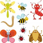 kit Stickers 9 insectes