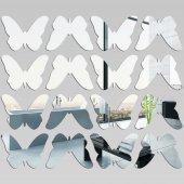 Kit Specchio acrilico Plexiglass farfalle