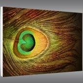Obraz Forex - Design